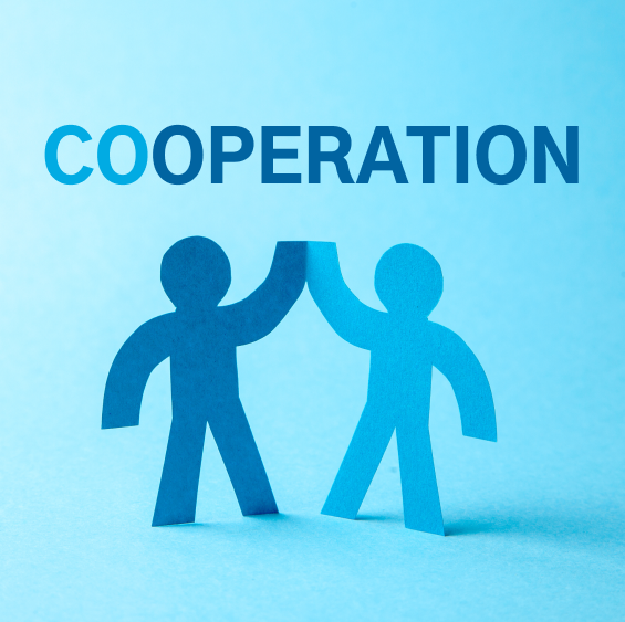 Cooperation Game